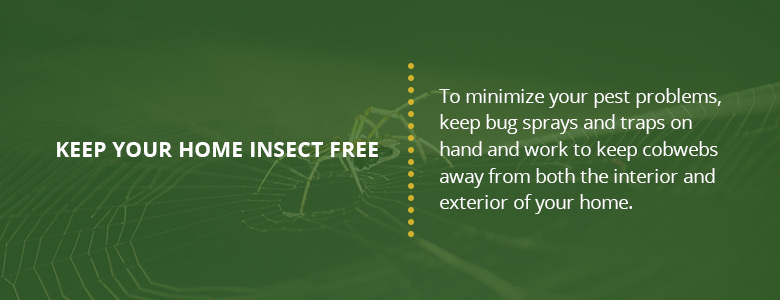 Tips for keeping your home insect free.